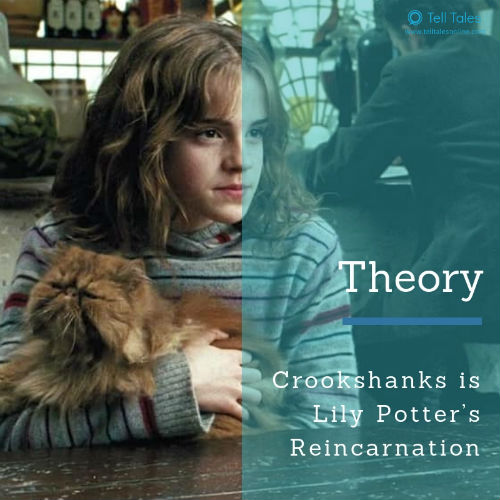 Crookshanks theory