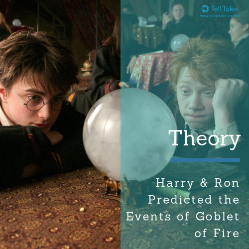 Divination harry ron theory